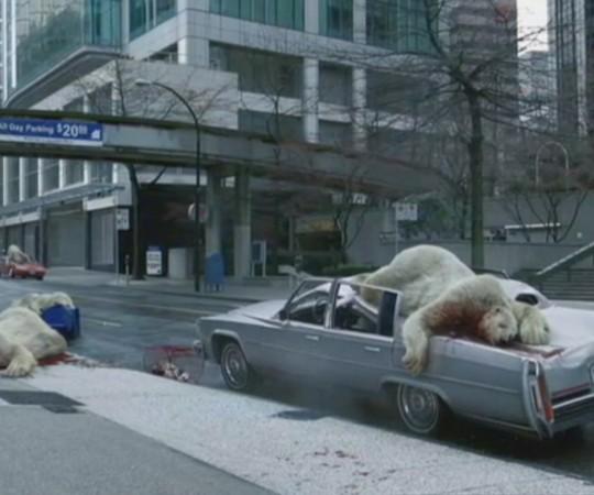 Plane Stupid Polar Bears